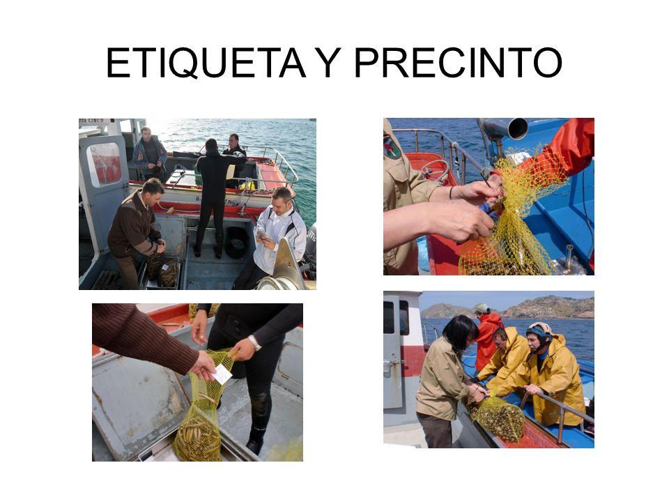 24/03/2017 ETIQUETA Y PRECINTO