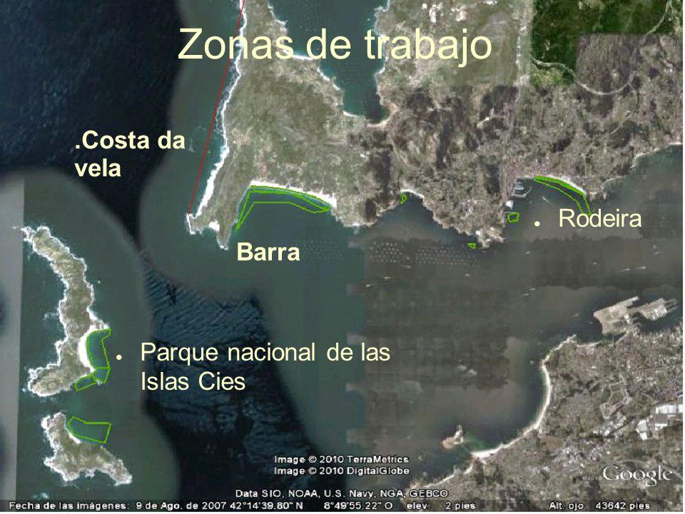 Zonas de trabajo .Costa da vela Rodeira Barra