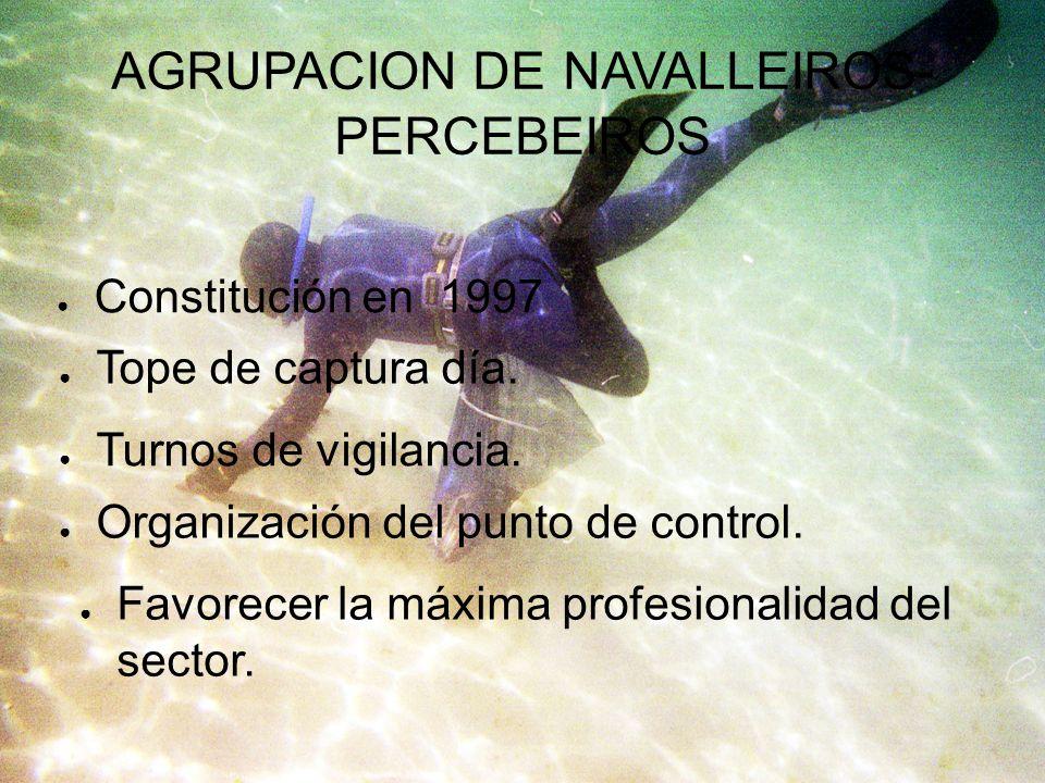 AGRUPACION DE NAVALLEIROS-PERCEBEIROS