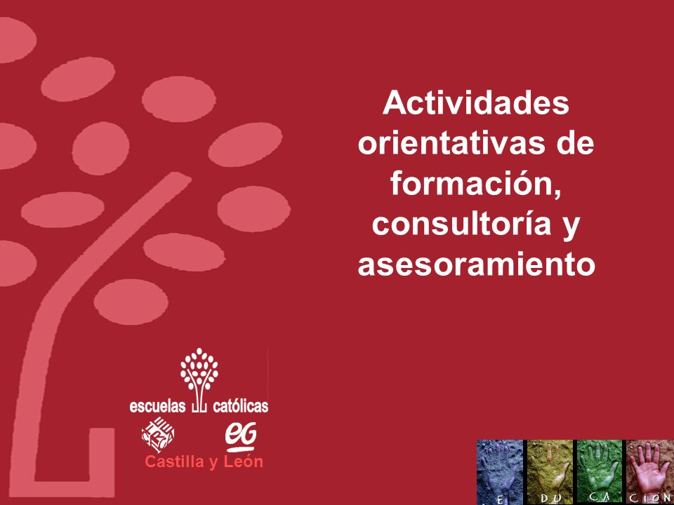 Actividades orientativas de formación, consultoría y asesoramiento