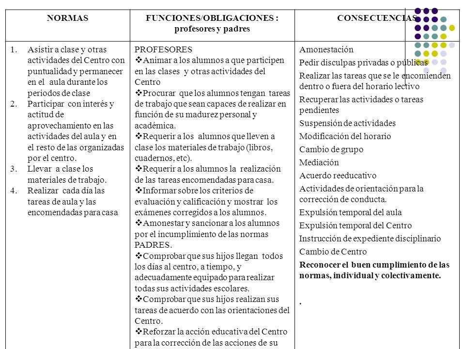 FUNCIONES/OBLIGACIONES :