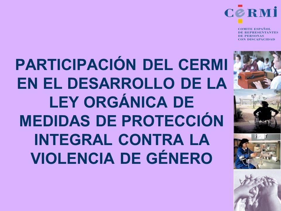 PARTICIPACIÓN DEL CERMI EN EL DESARROLLO DE LA LEY ORGÁNICA DE MEDIDAS DE PROTECCIÓN INTEGRAL CONTRA LA VIOLENCIA DE GÉNERO