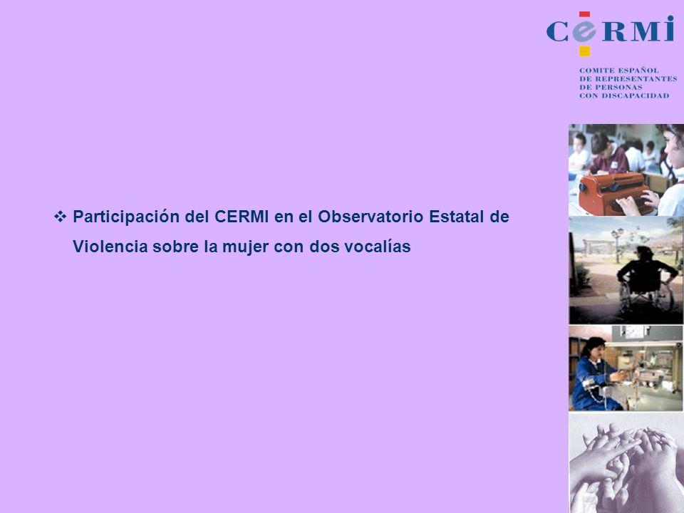 Participación del CERMI en el Observatorio Estatal de Violencia sobre la mujer con dos vocalías