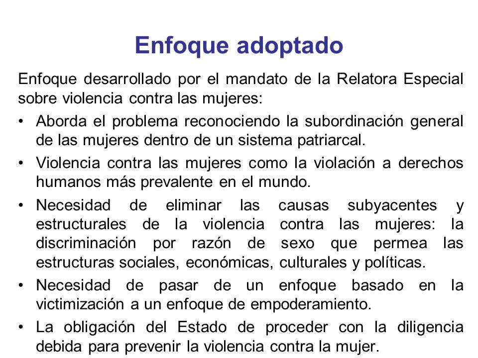 Enfoque adoptadoEnfoque desarrollado por el mandato de la Relatora Especial sobre violencia contra las mujeres: