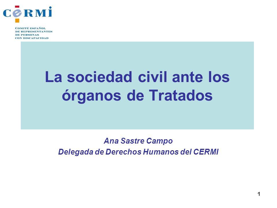 La sociedad civil ante los órganos de Tratados