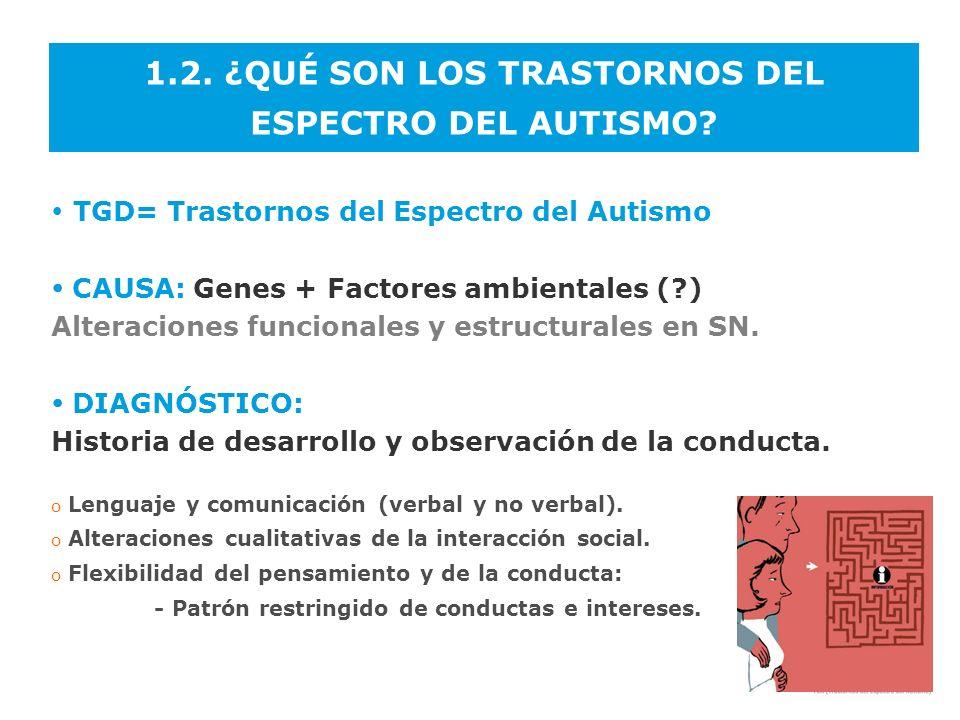 1.2. ¿QUÉ SON LOS TRASTORNOS DEL ESPECTRO DEL AUTISMO