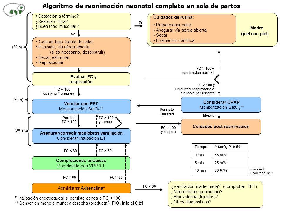 Madre Algoritmo de reanimación neonatal completa en sala de partos