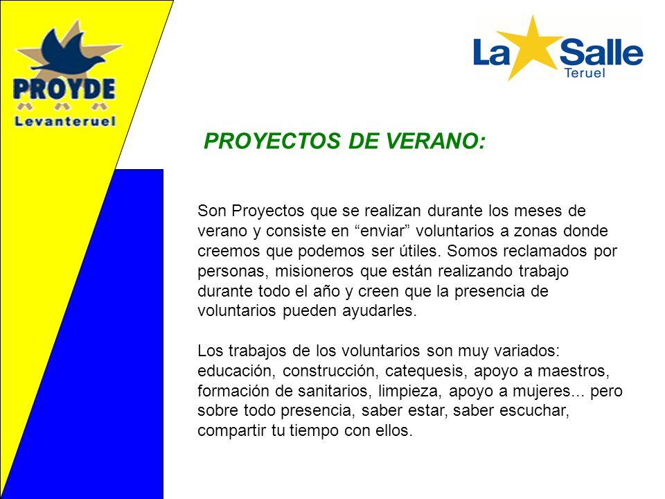 PROYECTOS DE VERANO: