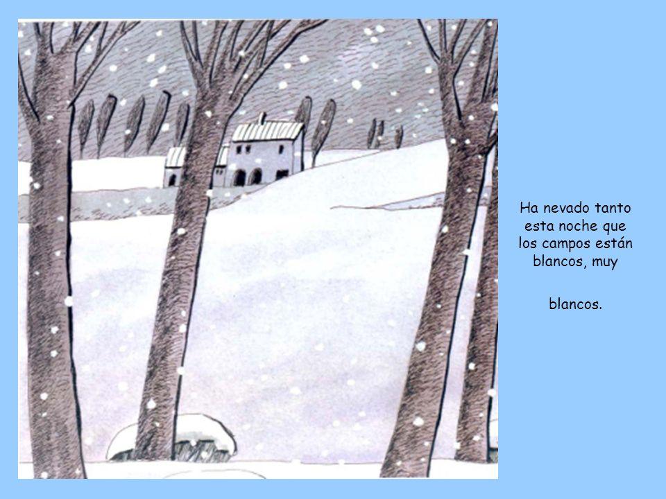 Ha nevado tanto esta noche que los campos están blancos, muy blancos.