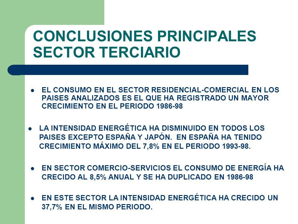 CONCLUSIONES PRINCIPALES SECTOR TERCIARIO