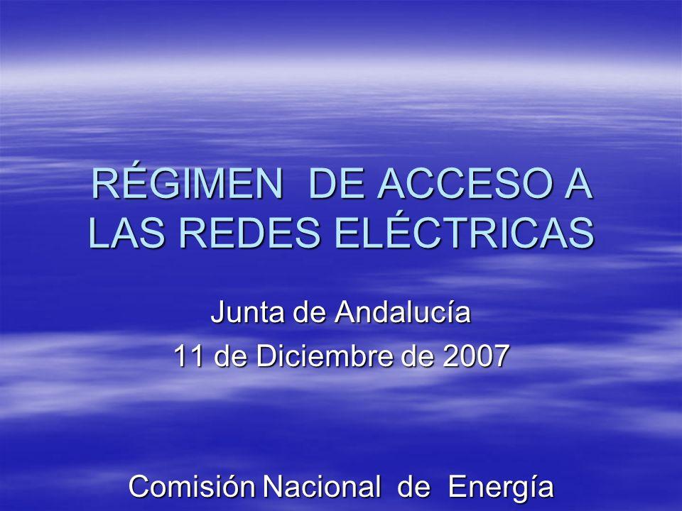 RÉGIMEN DE ACCESO A LAS REDES ELÉCTRICAS