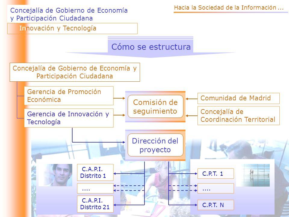 Cómo se estructura Comisión de seguimiento Dirección del proyecto