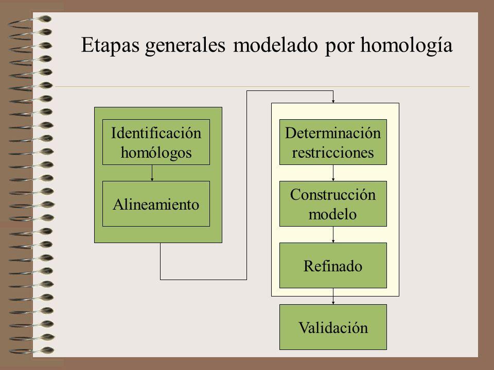 Etapas generales modelado por homología