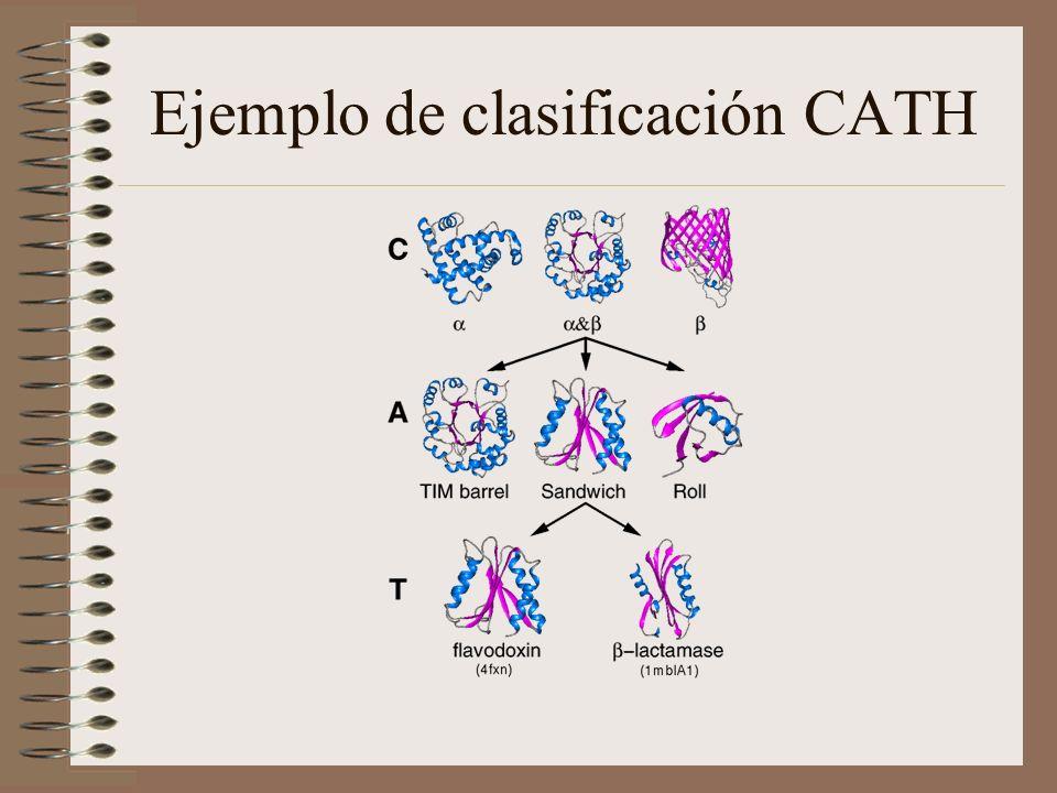 Ejemplo de clasificación CATH