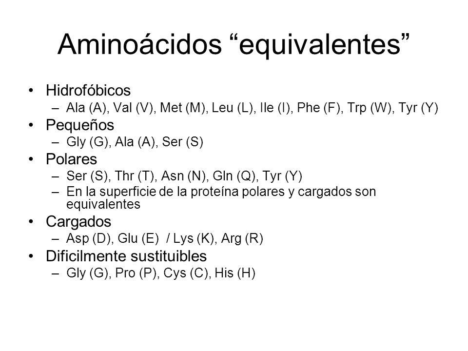 Aminoácidos equivalentes