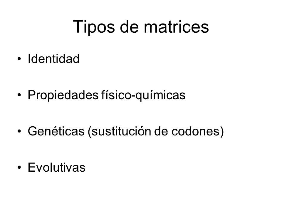 Tipos de matrices Identidad Propiedades físico-químicas