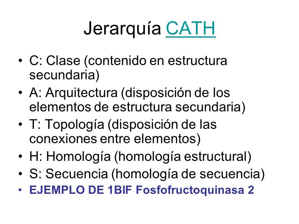Jerarquía CATH C: Clase (contenido en estructura secundaria)
