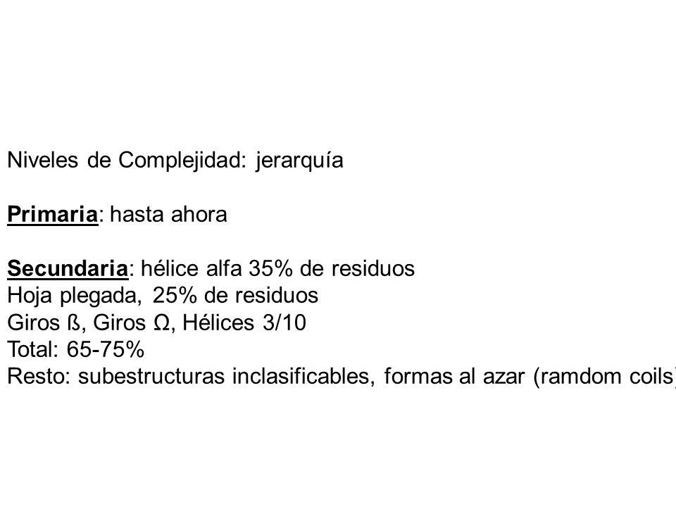 Niveles de Complejidad: jerarquía