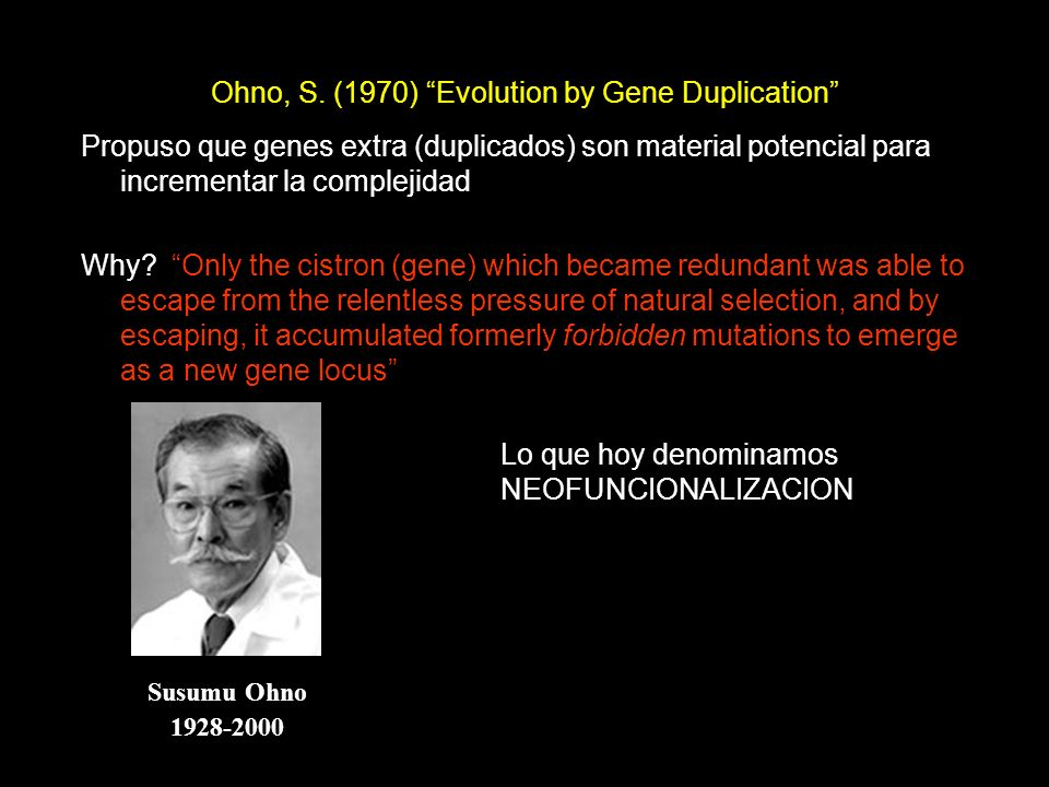 Ohno, S. (1970) Evolution by Gene Duplication