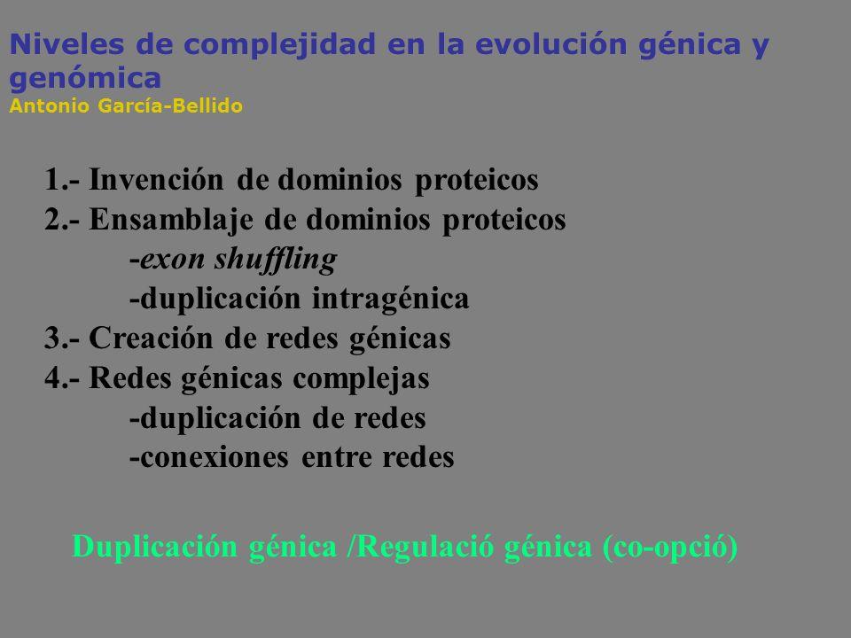 1.- Invención de dominios proteicos