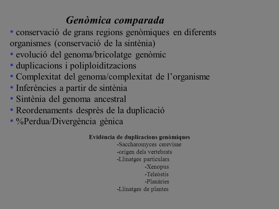 evolució del genoma/bricolatge genòmic