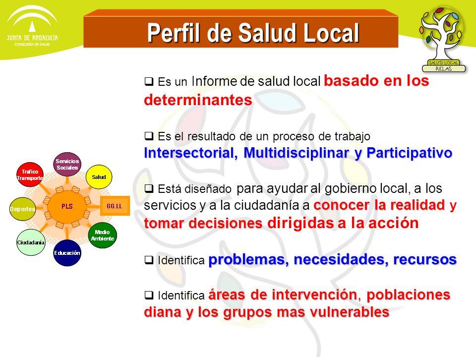Perfil de Salud Local Intersectorial, Multidisciplinar y Participativo