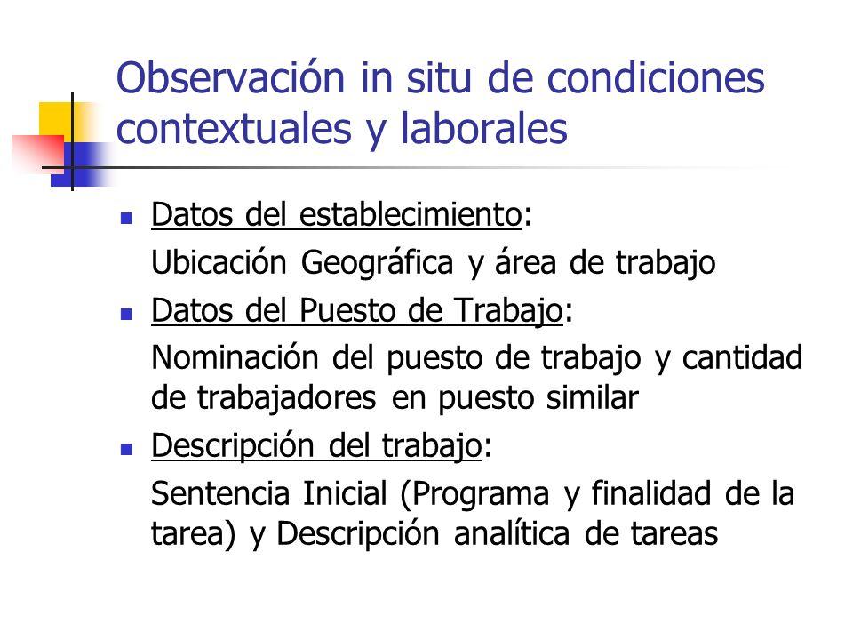 Observación in situ de condiciones contextuales y laborales