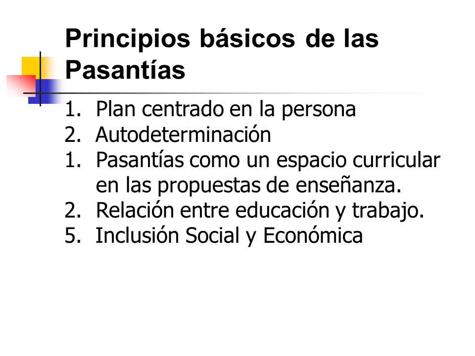 Principios básicos de las Pasantías