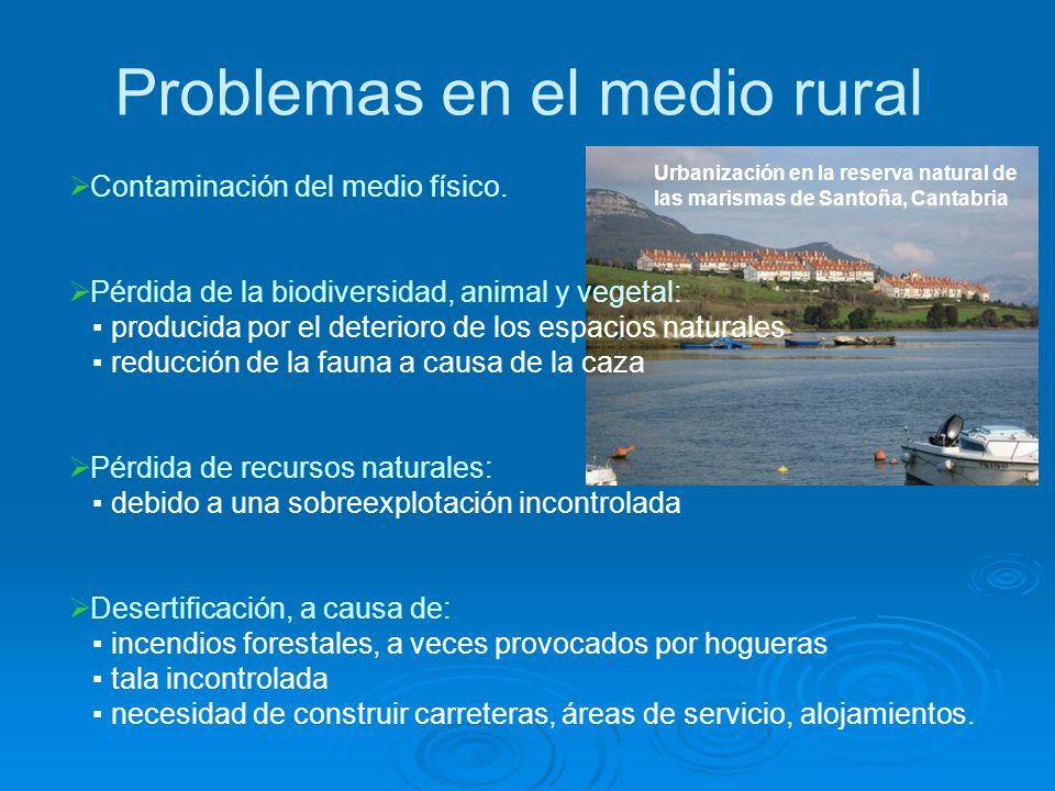 Problemas en el medio rural