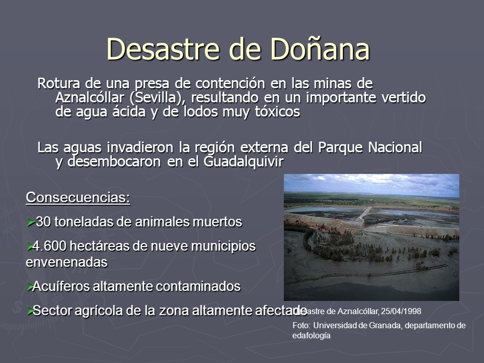 Desastre de Doñana