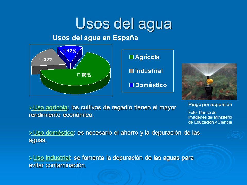 Usos del agua Riego por aspersión. Foto: Banco de imágenes del Ministerio de Educación y Ciencia.