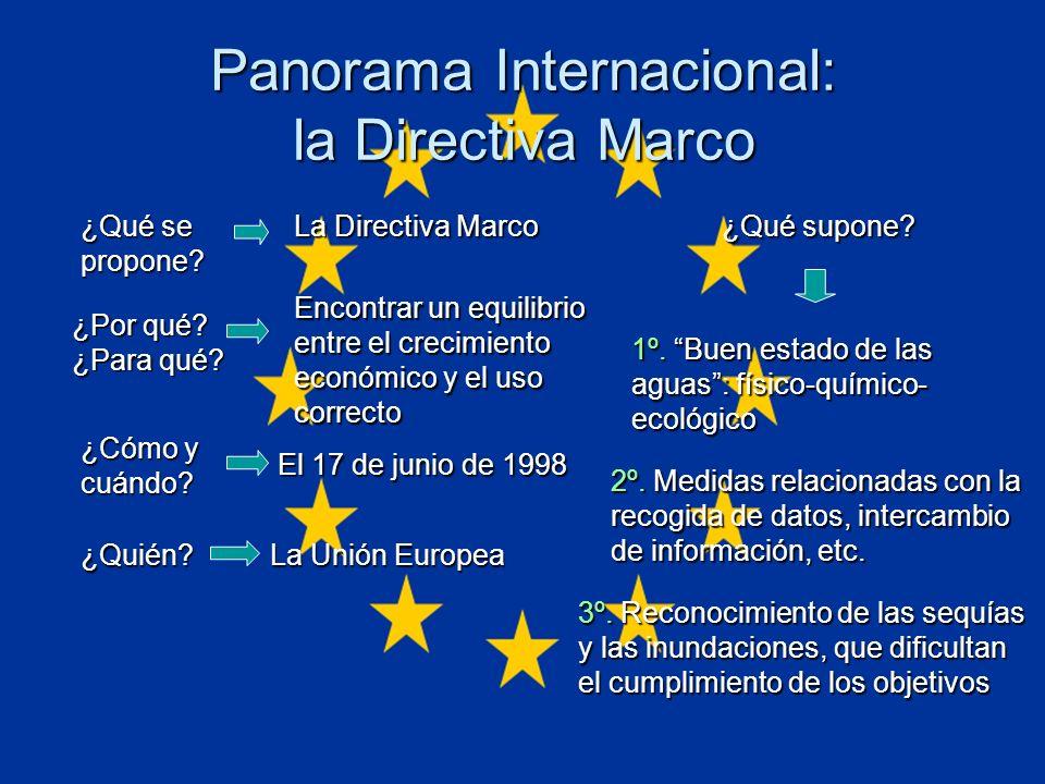 Panorama Internacional: la Directiva Marco