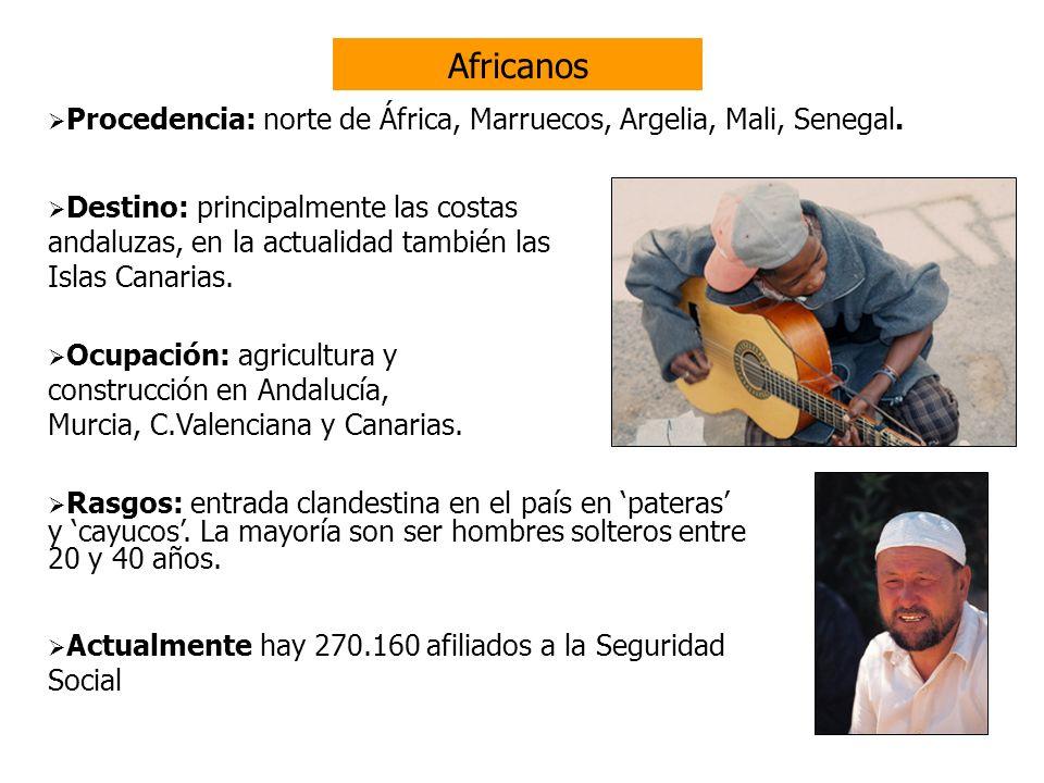 Africanos construcción en Andalucía, Murcia, C.Valenciana y Canarias.