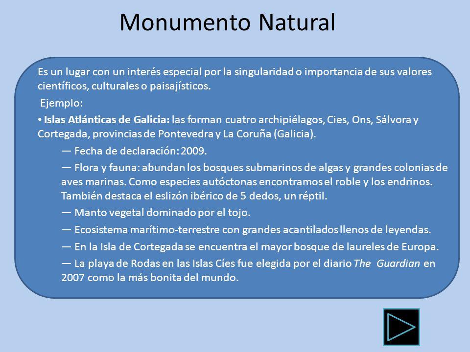Monumento NaturalEs un lugar con un interés especial por la singularidad o importancia de sus valores científicos, culturales o paisajísticos.