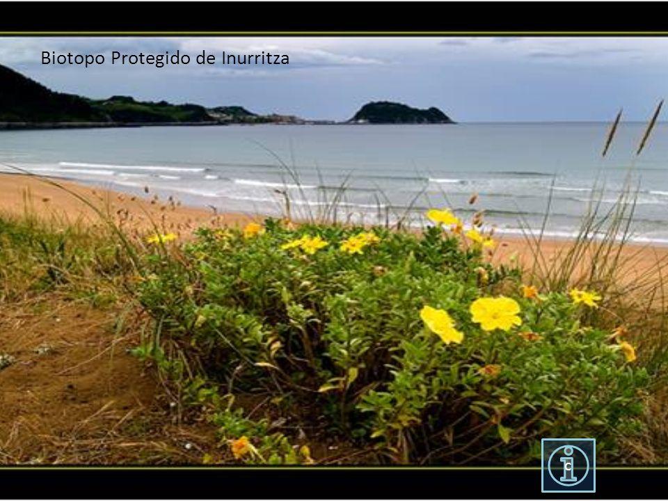 Biotopo Protegido de Inurritza
