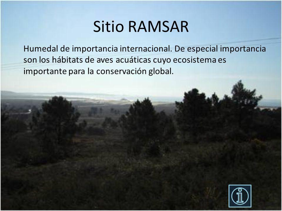 Sitio RAMSAR