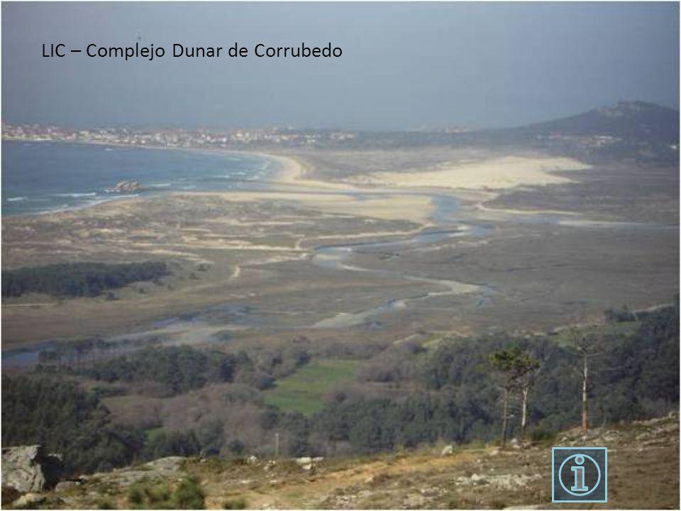 LIC – Complejo Dunar de Corrubedo