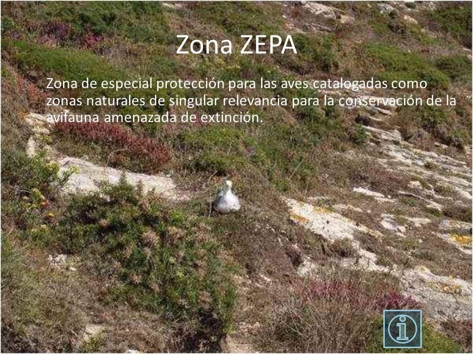 Zona ZEPA