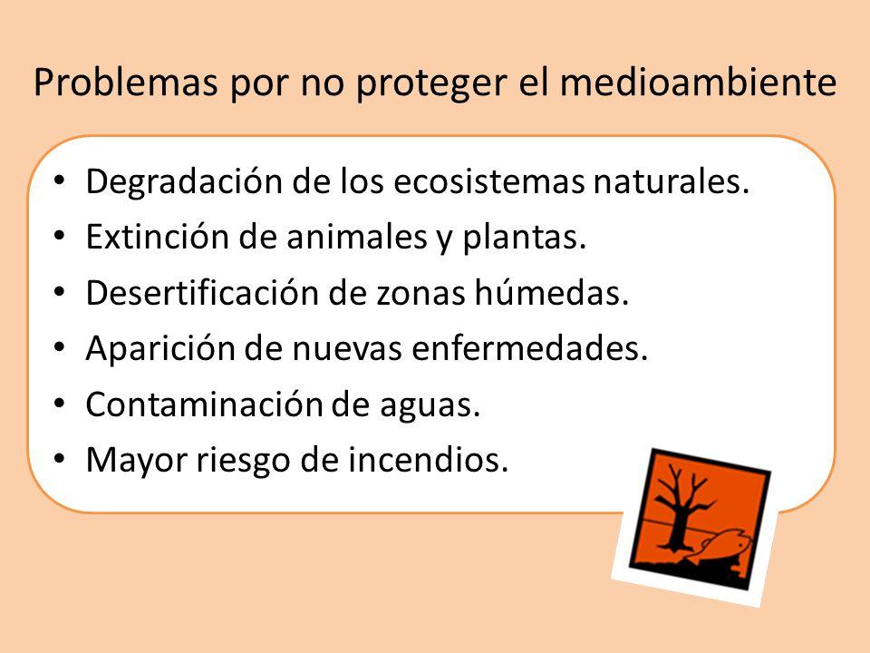Problemas por no proteger el medioambiente