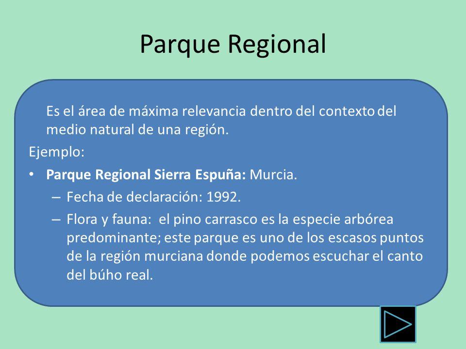 Parque Regional Es el área de máxima relevancia dentro del contexto del medio natural de una región.