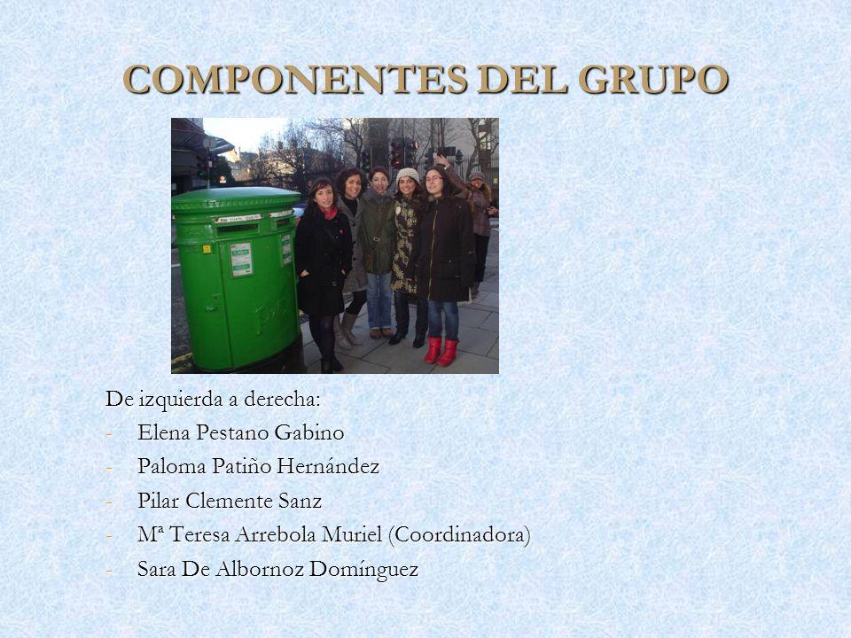 COMPONENTES DEL GRUPO De izquierda a derecha: Elena Pestano Gabino