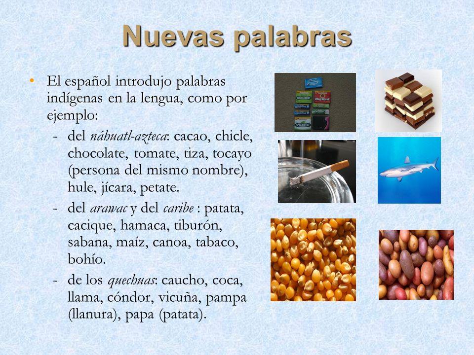 Nuevas palabras El español introdujo palabras indígenas en la lengua, como por ejemplo: