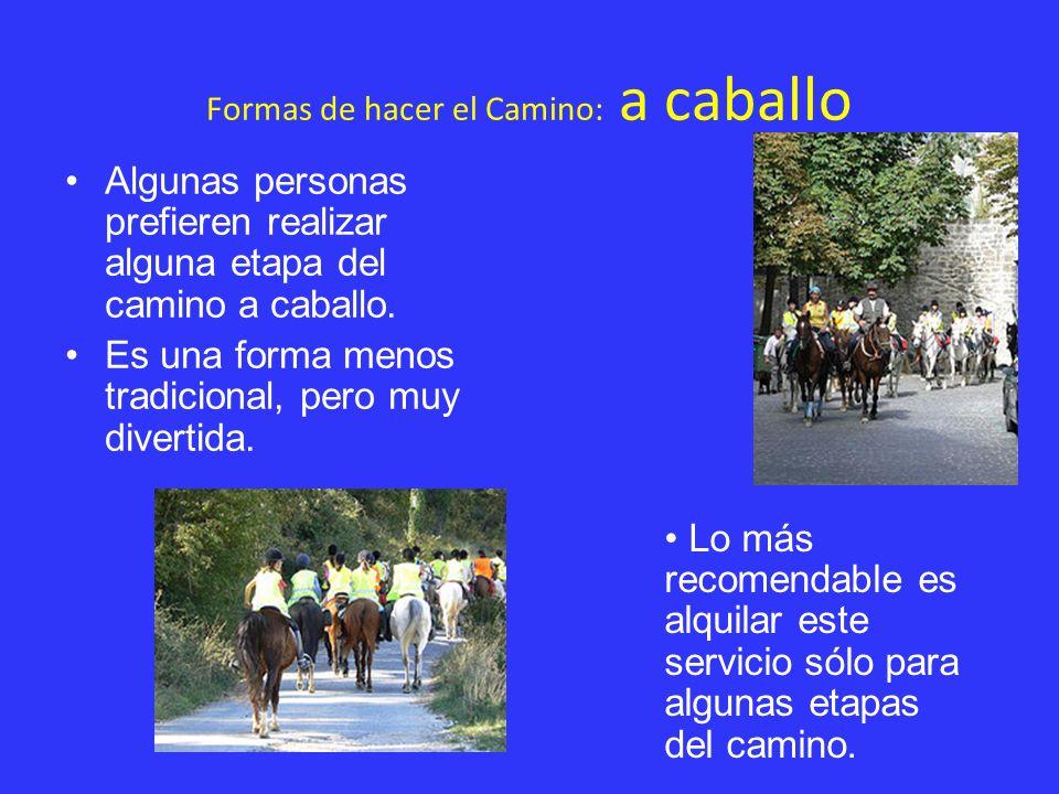 Formas de hacer el Camino: a caballo