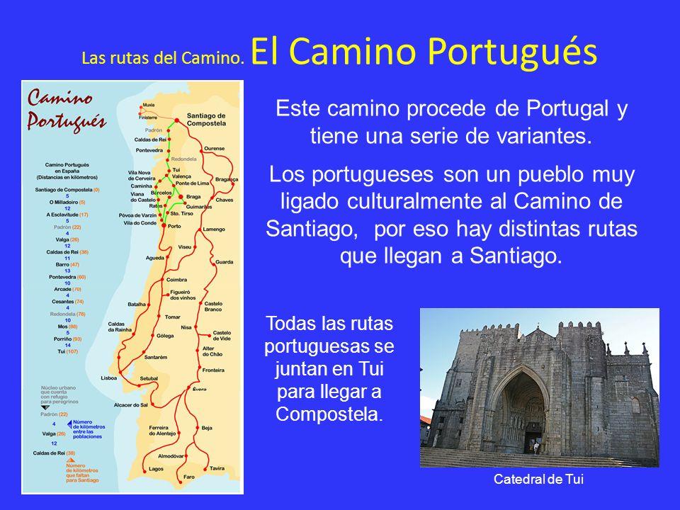 Las rutas del Camino. El Camino Portugués