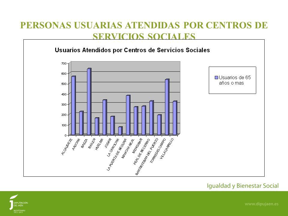 PERSONAS USUARIAS ATENDIDAS POR CENTROS DE SERVICIOS SOCIALES