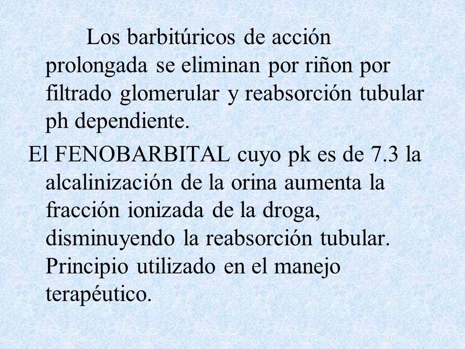 Los barbitúricos de acción prolongada se eliminan por riñon por filtrado glomerular y reabsorción tubular ph dependiente.