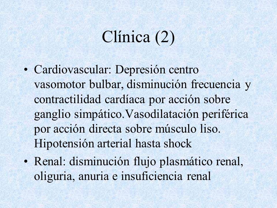 Clínica (2)