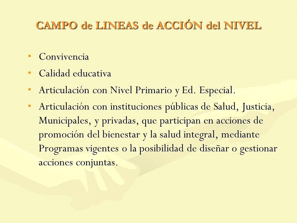 CAMPO de LINEAS de ACCIÓN del NIVEL