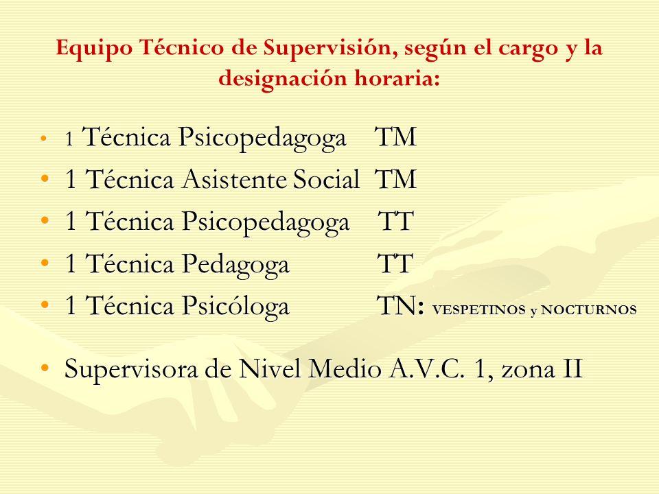 1 Técnica Asistente Social TM 1 Técnica Psicopedagoga TT