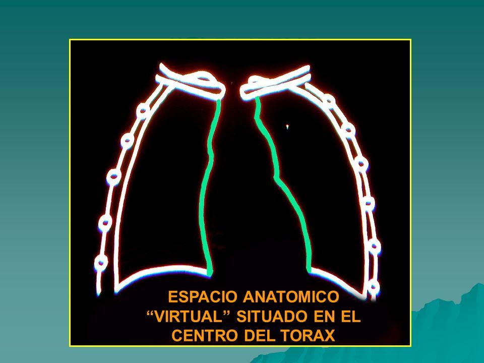 ESPACIO ANATOMICO VIRTUAL SITUADO EN EL CENTRO DEL TORAX